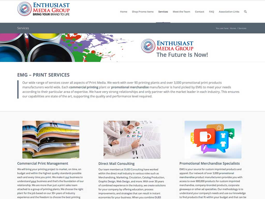 Web Design - Enthusiast Media Group